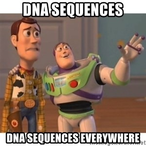 Toy story - DNA sequences DNA sequences everywhere