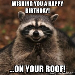 evil raccoon - Wishing You A Happy Birthday! ...On Your Roof!
