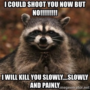 evil raccoon - I could shoot you now but no!!!!!!!!! I will kill you slowly....slowly and painly