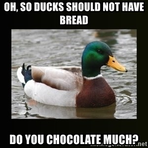 good advice duck - OH, SO DUCKS SHOULD NOT HAVE BREAD DO YOU CHOCOLATE MUCH?