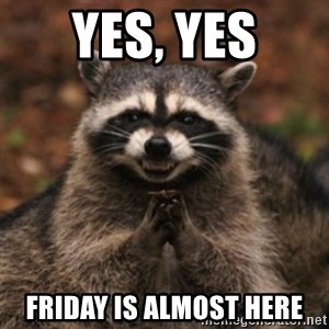evil raccoon - YES, YES FRIDAY IS ALMOST HERE