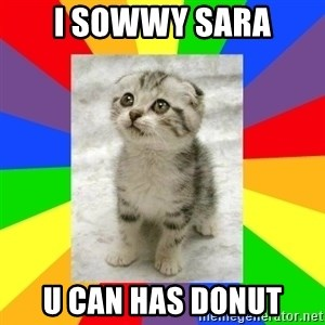Cute Kitten - I SOWWY SARA U CAN HAS DONUT