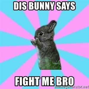 yAy FoR LifE BunNy - dis bunny says fight me bro