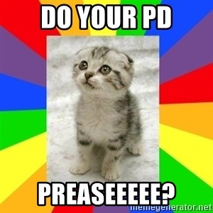 Cute Kitten - Do your PD Preaseeeee?
