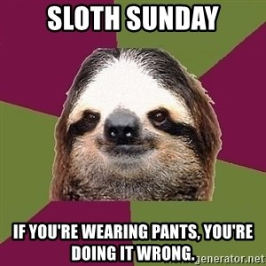 Just-Lazy-Sloth - Sloth Sunday If you're wearing pants, you're doing it wrong.