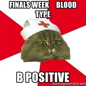 Nursing Student Cat - finals week     blood type B Positive