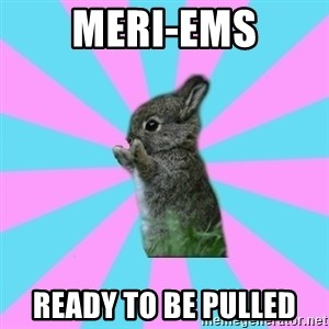 yAy FoR LifE BunNy - meri-ems ready to be pulled
