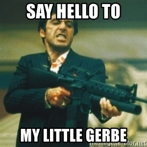 Tony Montana - Say hello to my little Gerbe