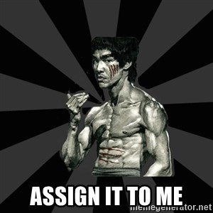 Bruce Lee Figther -  Assign it to me
