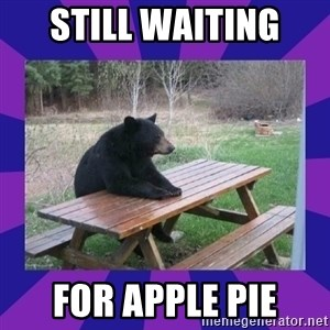 waiting bear - still waiting  for apple pie
