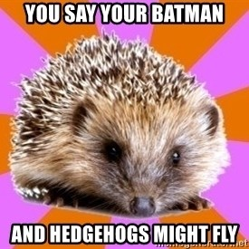 Homeschooled Hedgehog - you say your batman and hedgehogs might fly