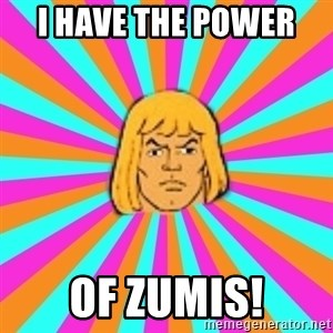 He-Man - I have the power  of zumis!