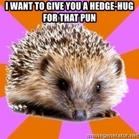 Homeschooled Hedgehog - i want to give you a hedge-hug for that pun