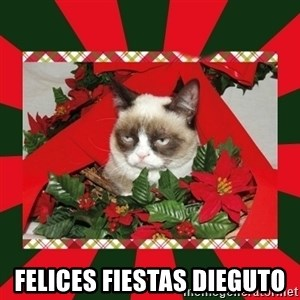 GRUMPY CAT ON CHRISTMAS -  Felices fiestas Dieguto