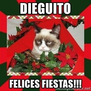 GRUMPY CAT ON CHRISTMAS - Dieguito Felices Fiestas!!!