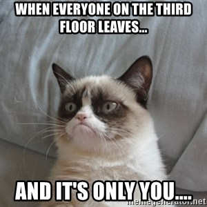 Grumpy cat good - When everyone on the third floor leaves... And it's only you....