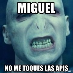 Angry Voldemort - MIGUEL NO ME TOQUES LAS APIS