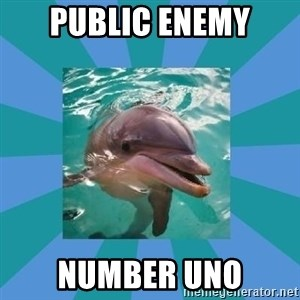 Dyscalculic Dolphin - public enemy number uno