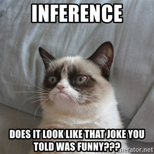 Grumpy cat good - Inference Does it look like that joke you told was funny???