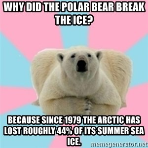 Perfection Polar Bear - Why Did the polar bear break the ice? Because since 1979 the Arctic has lost roughly 44% of its summer sea ice.