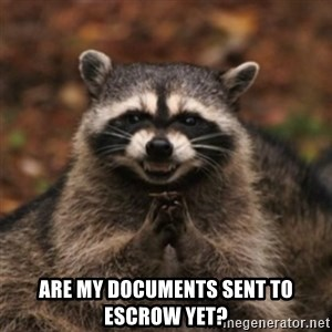 evil raccoon -  Are my documents sent to escrow yet?