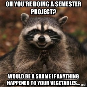 evil raccoon - Oh you're doing a semester project? Would be a shame if anything happened to your vegetables...