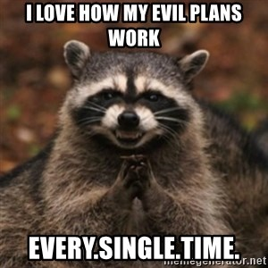 evil raccoon - I love how my evil plans work every.single.time.