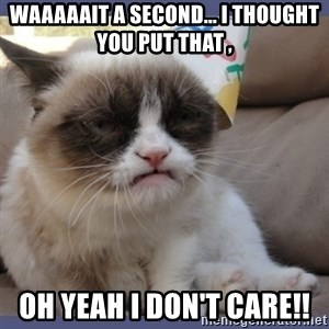 Birthday Grumpy Cat - waaaaait a second... i thought you put that , Oh yeah I don't care!!