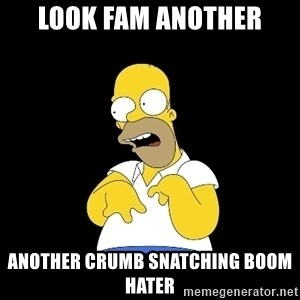 look-marge - LOOK FAM ANOTHER ANOTHER CRUMB SNATCHING BOOM HATER