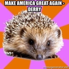 Homeschooled Hedgehog - Make America great again -derry