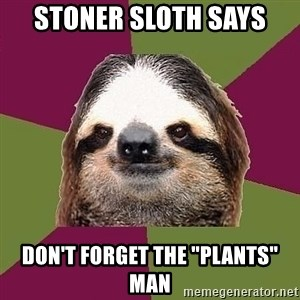 """Just-Lazy-Sloth - stoner sloth says don't forget the """"plants"""" man"""
