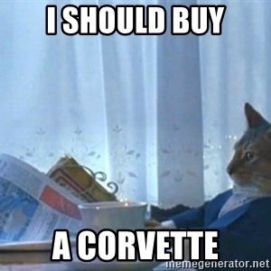 newspaper cat realization - I should buy a corvette