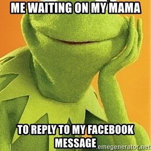 Kermit the frog - Me WAITING ON MY MAMA TO REPLY TO MY FACEBOOK MESSAGE