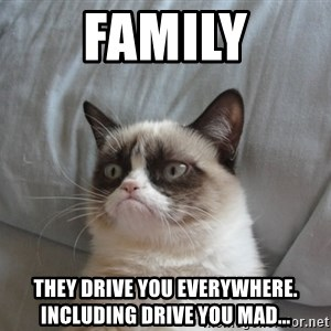 Grumpy cat good - Family They drive you everywhere.  Including drive you mad...