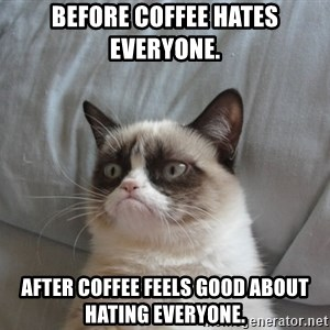 Grumpy cat good - Before coffee hates everyone. After coffee feels good about hating everyone.