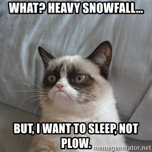 Grumpy cat good - What? Heavy snowfall... But, I want to sleep, not plow.