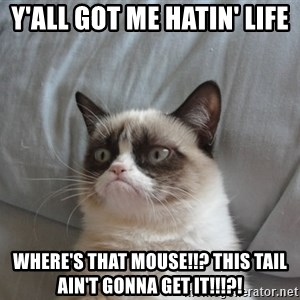 Grumpy cat good - Y'all got me hatin' life Where's that MOUSE!!? This TAIL ain't gonna GET IT!!!?!