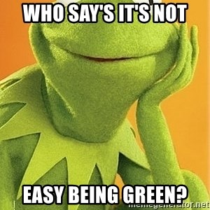 Kermit the frog - who say's it's not easy being green?