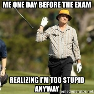 Fuck It Bill Murray - me one day before the exam realizing I'm too stupid anyway