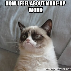 Grumpy cat good - How i feel about make-up work