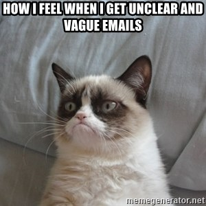 Grumpy cat good - How I feel when I get unclear and vague emails