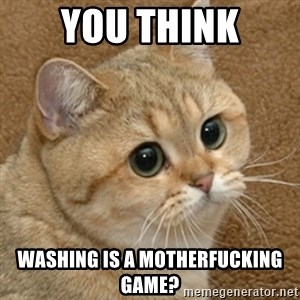 motherfucking game cat - YOU THINK WASHING IS A MOTHERFUCKING GAME?