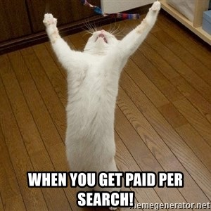 praise the lord cat -  when you get paid per search!