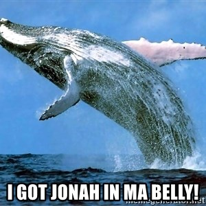whaleeee -  I got jonah in ma belly!