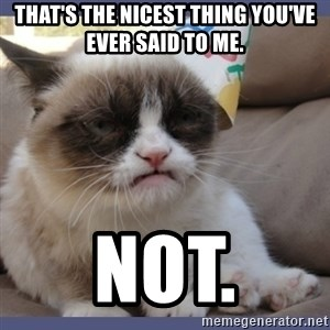 Birthday Grumpy Cat - that's the nicest thing you've ever said to me. NOT.