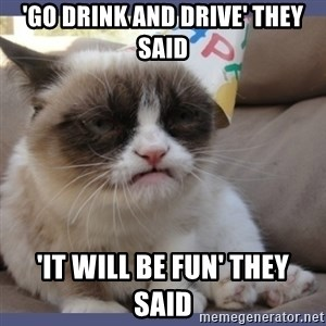 Birthday Grumpy Cat - 'Go Drink and Drive' They Said 'It Will Be Fun' They Said