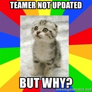 Cute Kitten - Teamer Not Updated But why?