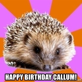 Homeschooled Hedgehog -  Happy Birthday Callum!