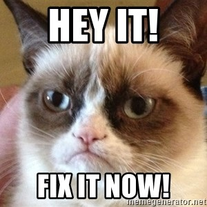 Angry Cat Meme - HEY IT! FIX IT NOW!