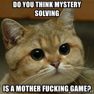 Do you think this is a motherfucking game? - do you think mystery solving is a mother fucking game?